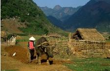bacme-hagiang
