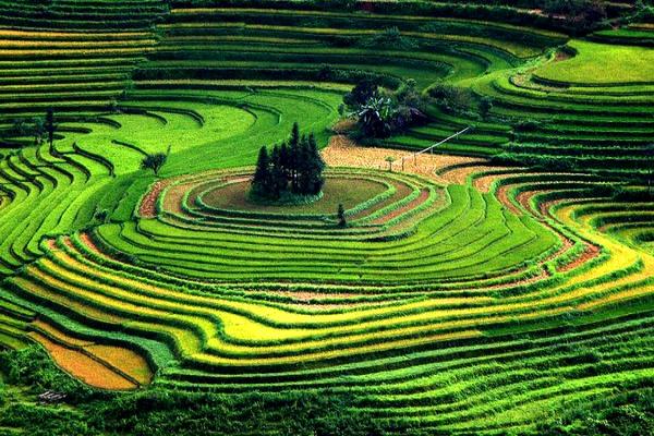 le nord ou le sud du vietnam