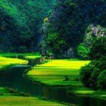 Immersion au Vietnam 2