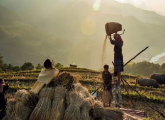 La beaute cachee des peuples Nord Vietnam