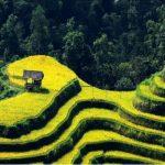 Randonnee Nord Vietnam 1
