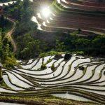 Randonnee Nord Vietnam 2