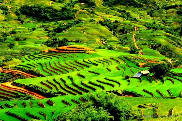 La randonnée au Nord Vietnam 2