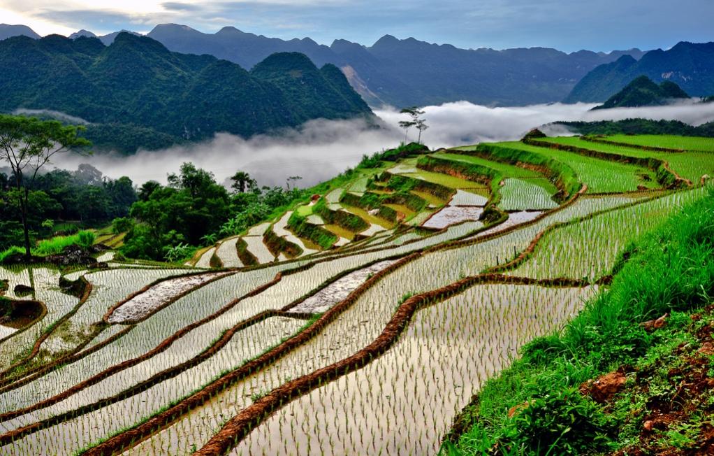 Voyage-vietnam-1