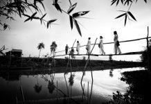 le vietnam panorama