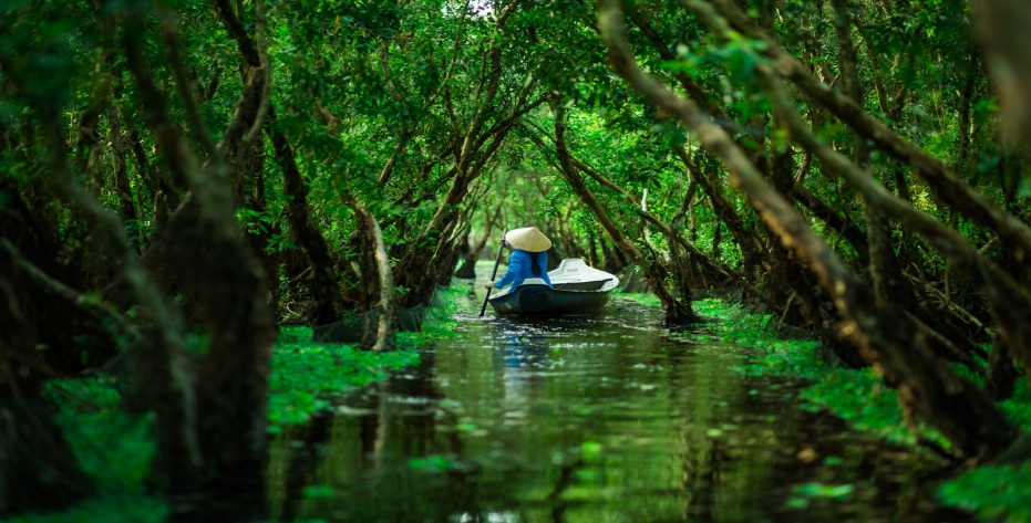 voyage dans le delta du mekong 2
