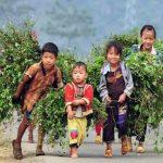 voyage au Nord vietnam 2