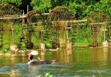norias au Nord du Vietnam 5