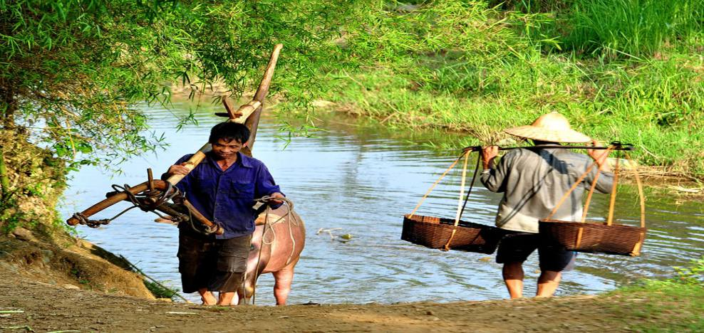 norias au Nord du Vietnam 8