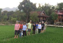 merveilleux voyage au vietnam
