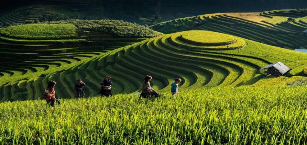 voyages et rencontres au vietnam