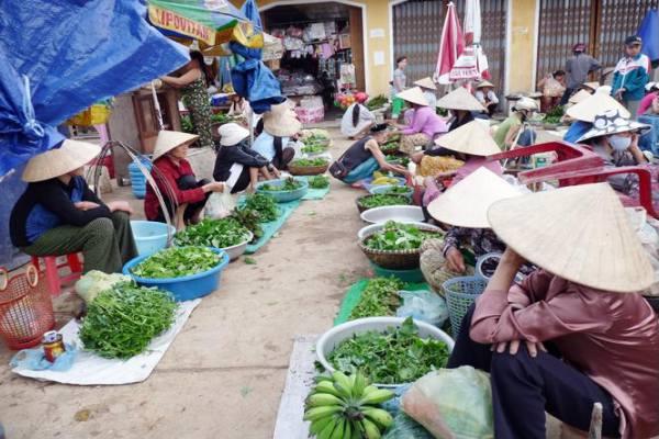 visiter la campagne de Hue à vélo 2