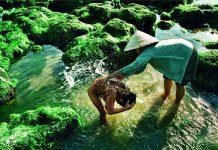 destinations les plus belles du Vietnam 12