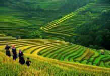 province de lao cai 10
