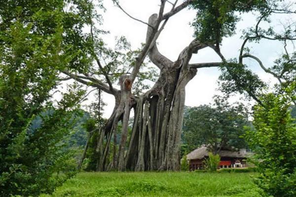 Province de Tuyen Quang 3