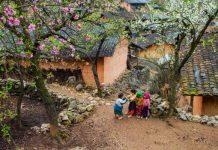 raisons pour voyager Ha Giang Vietnam 2