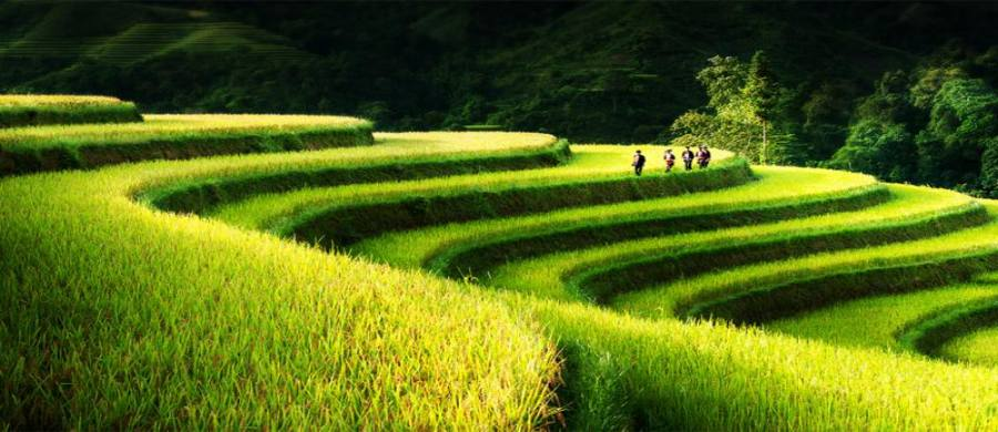raisons pour voyager Ha Giang Vietnam 3