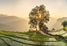 voyage au Vietnam 1