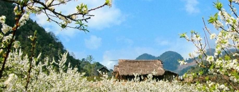 les plus beaux plateaux du Vietnam 6