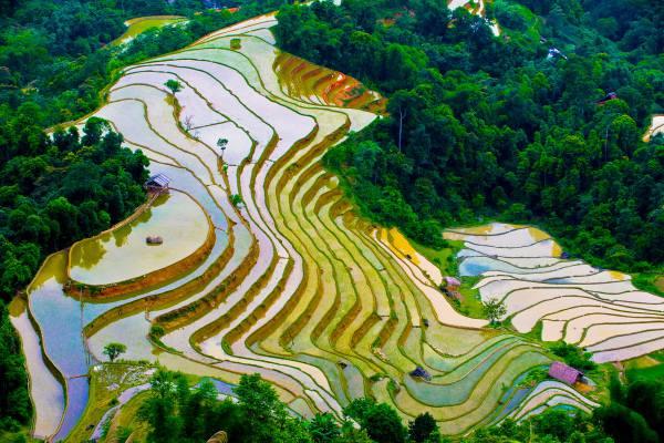 Nord du Vietnam 1