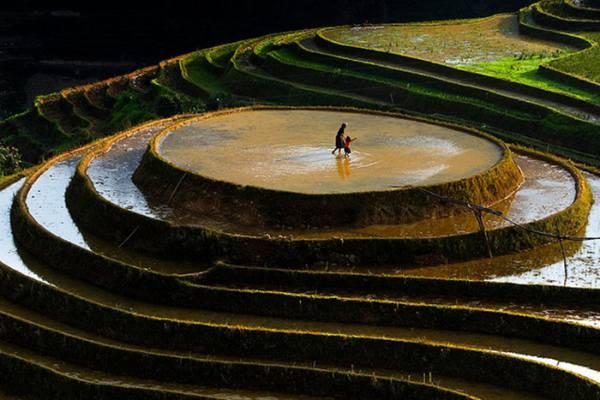 Nord du Vietnam 2