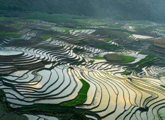 Nord du Vietnam 3