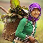 Voyage Vietnam 3 semaines 1