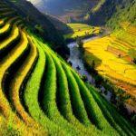 Voyage Vietnam Cambodge 3 semaines 2