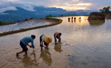15 jours Nord Vietnam