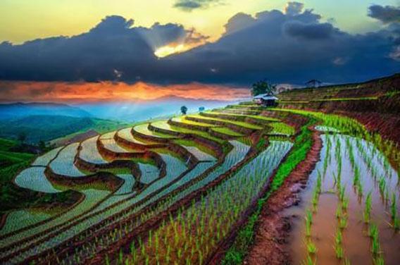 Nord Ouest du Vietnam 2