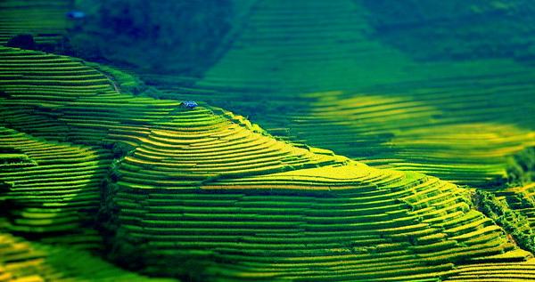 col de khau pha vietnam 2