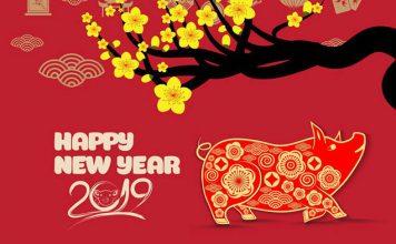 Le cochon dans la culture Vietnam 1