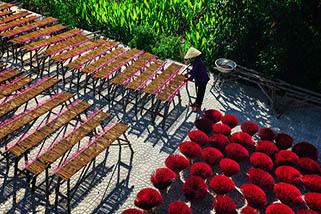 Province de Tay Ninh 2