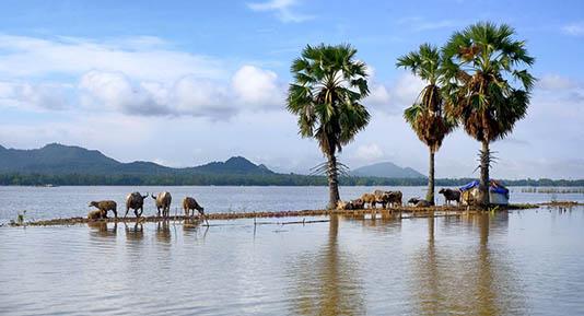 Top destinations du Delta du Mékong 7