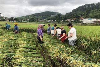 Voyage au Vietnam avec guide privé 9