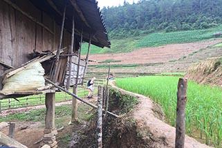 Circuit Nord Vietnam 15 jours