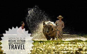 Circuit du Nord au Sud Vietnam