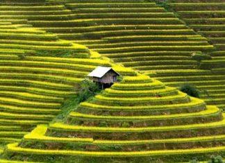 Que faire au Nord Vietnam