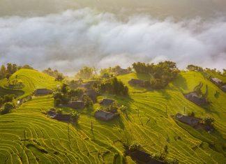conditions pour voyager au vietnam pendant la covid 19