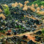 Aux confins du Tonkin Vietnam 2