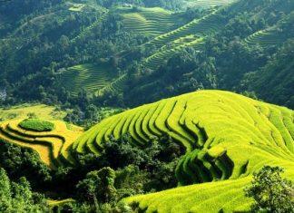 Aux confins du Tonkin Vietnam