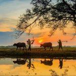 voyage Vietnam nord 15 jours 3
