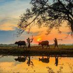 trek Vietnam nord 3