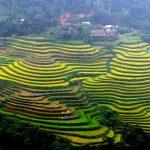 Circuit au Vietnam en Aout 2