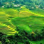 Circuit au Vietnam en Novembre 2